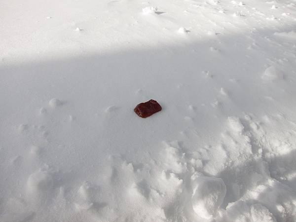 希臘帶來的果醬,要來吃挫冰了!