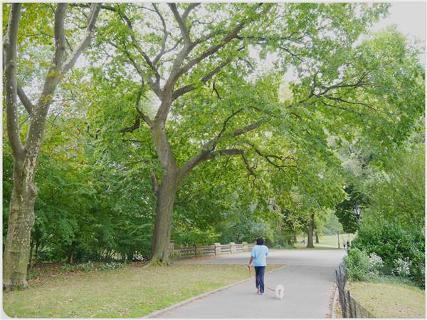 紐約中央公園03