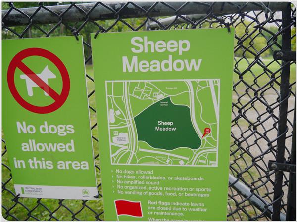 紐約中央公園11