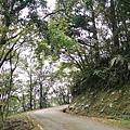 單車路線-飛躍的貓咪祕境37.jpg