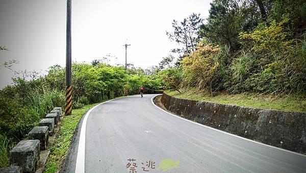 單車路線-飛躍的貓咪祕境27.jpg