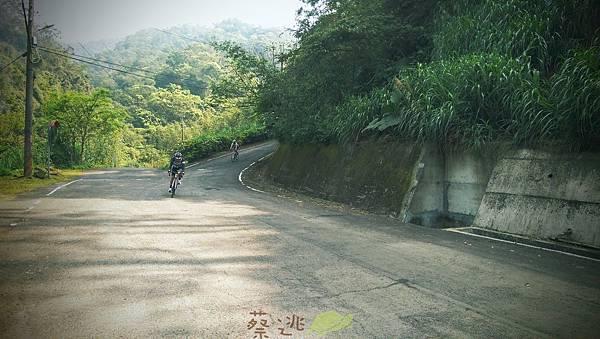 單車路線-飛躍的貓咪祕境13.jpg