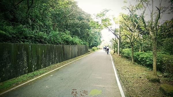 單車路線-飛躍的貓咪祕境10.jpg
