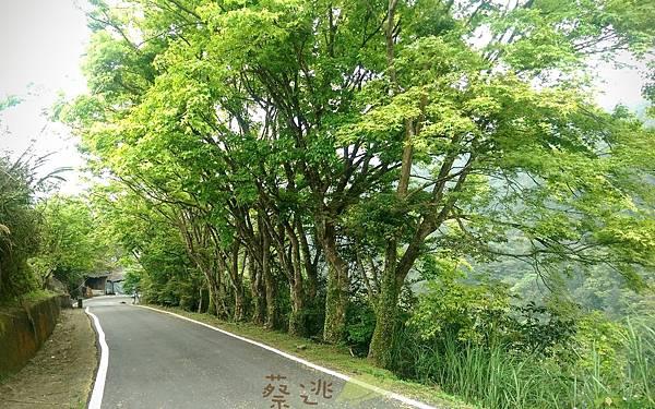 單車路線-柑林國小11.jpg