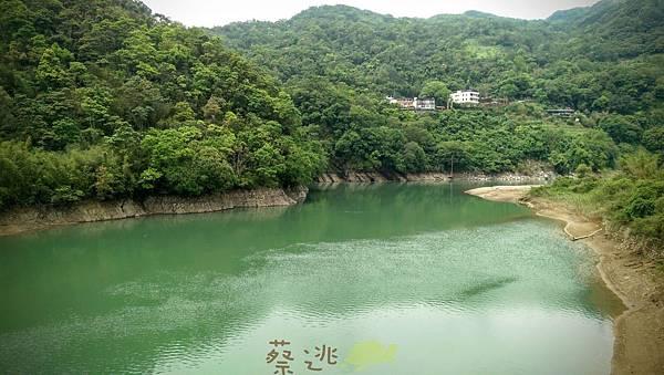 坪林五星級單車道金瓜寮吃香魚67.jpg