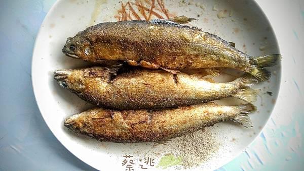 坪林五星級單車道金瓜寮吃香魚57.jpg