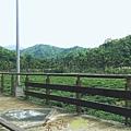 坪林五星級單車道金瓜寮吃香魚54.jpg