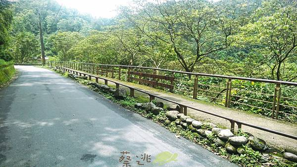 坪林五星級單車道金瓜寮吃香魚39.jpg