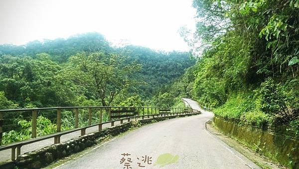 坪林五星級單車道金瓜寮吃香魚40.jpg