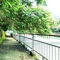 坪林五星級單車道金瓜寮吃香魚17.jpg