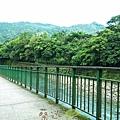 坪林五星級單車道金瓜寮吃香魚12.jpg