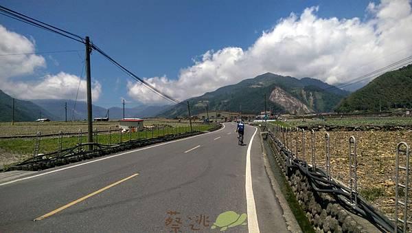中央山脈極限挑戰81.jpg