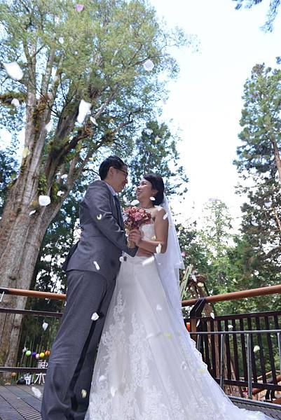 阿里山神木下婚禮2.JPG