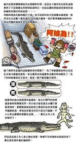 2014-0617鱷魚.jpg