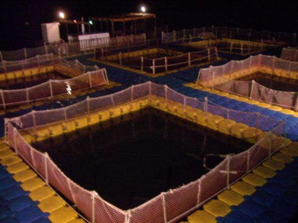 釣魚的池子~~~