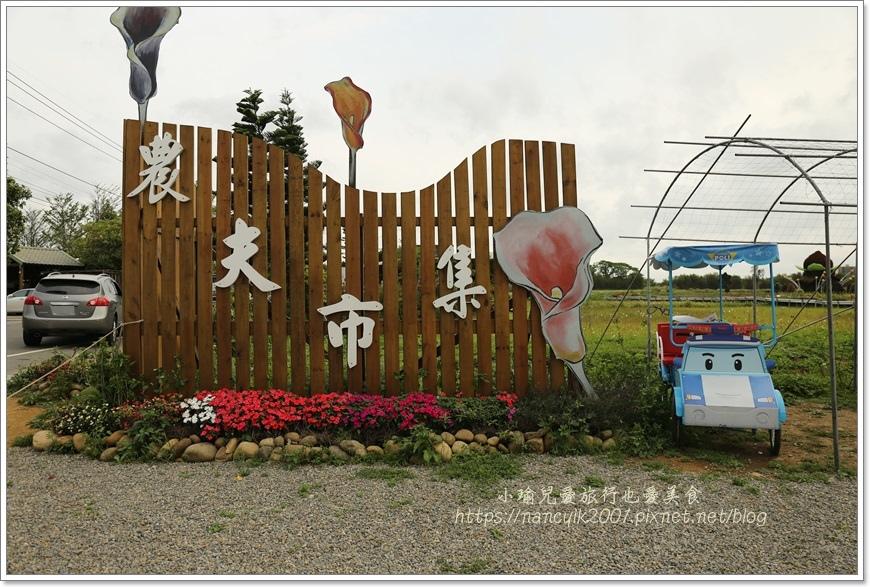 桃園彩色海芋11