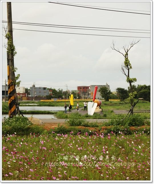 桃園彩色海芋14