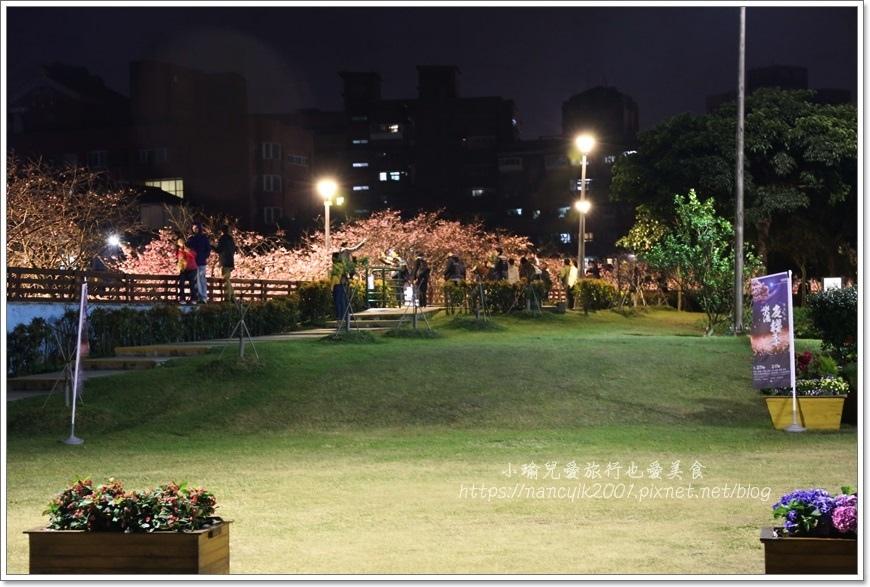 東湖櫻花36