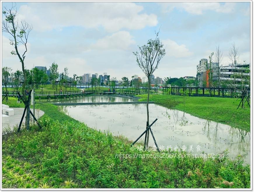 南港新新公園2.JPG
