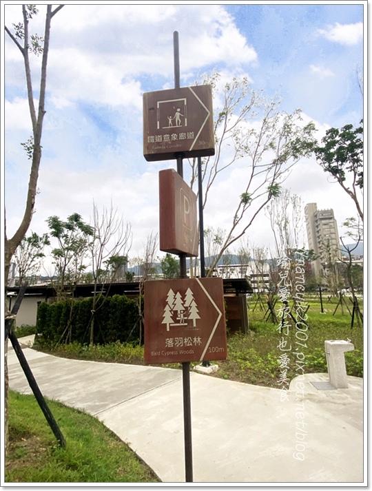 南港新新公園8.JPG