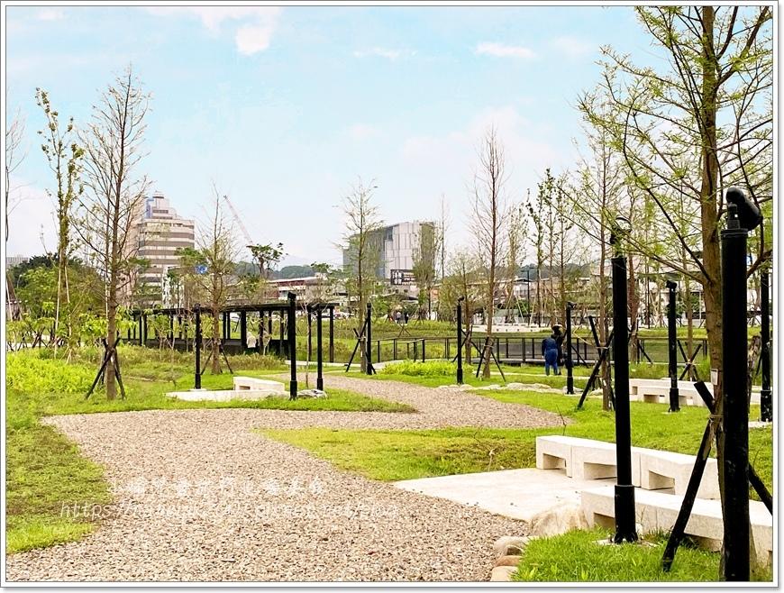 南港新新公園9.JPG