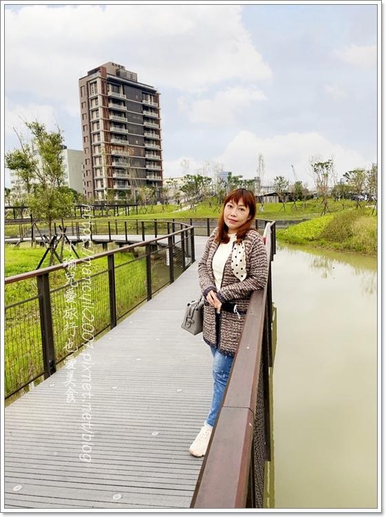 南港新新公園11.JPG