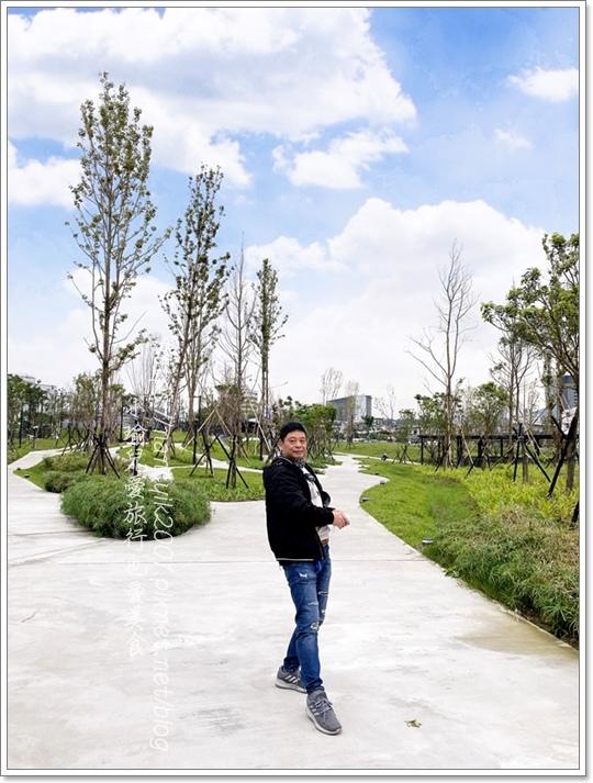 南港新新公園21.JPG