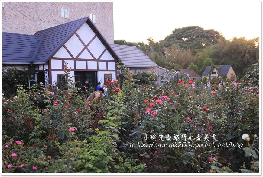 玫瑰山谷2.JPG
