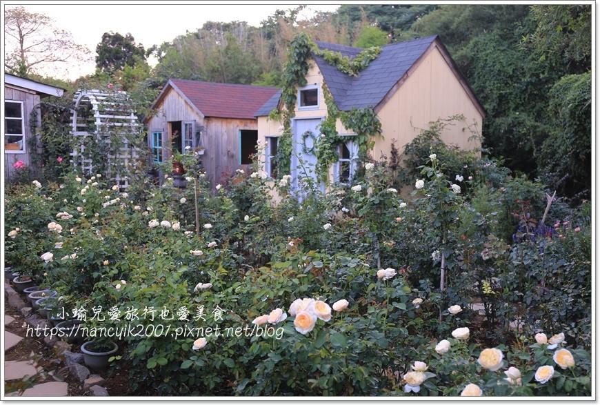 玫瑰山谷11.JPG