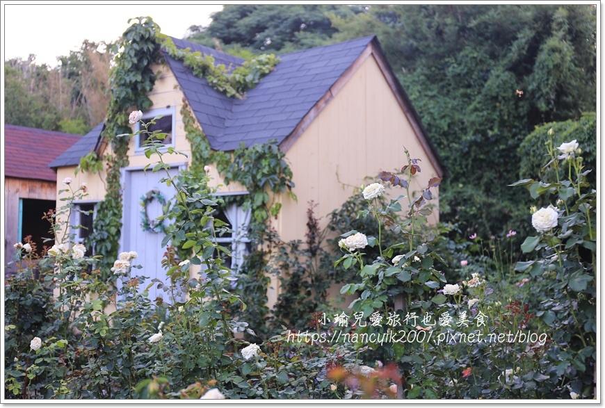 玫瑰山谷13.JPG