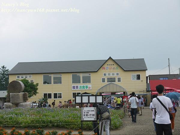 四季彩之丘-17.JPG