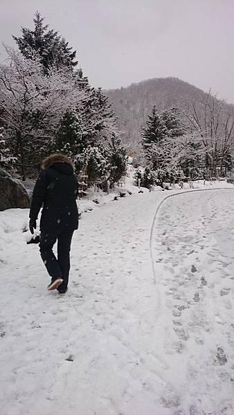 2015.12北海道冬景