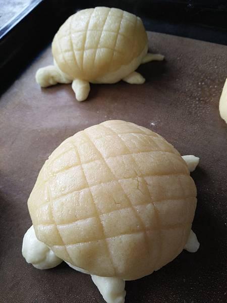烏龜造型菠蘿麵包