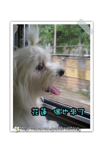 2009009 540(001).jpg
