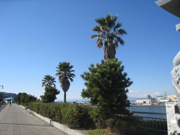 2010 Japan 183.jpg