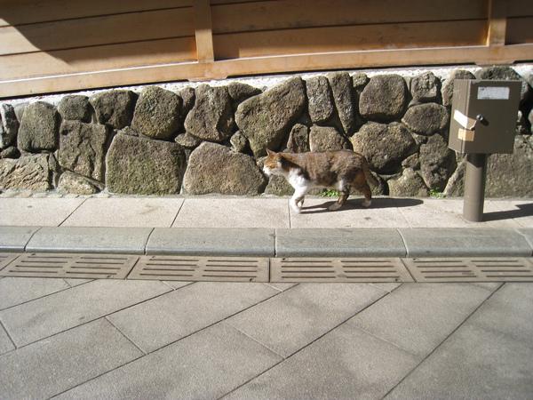 2010 Japan 261.jpg
