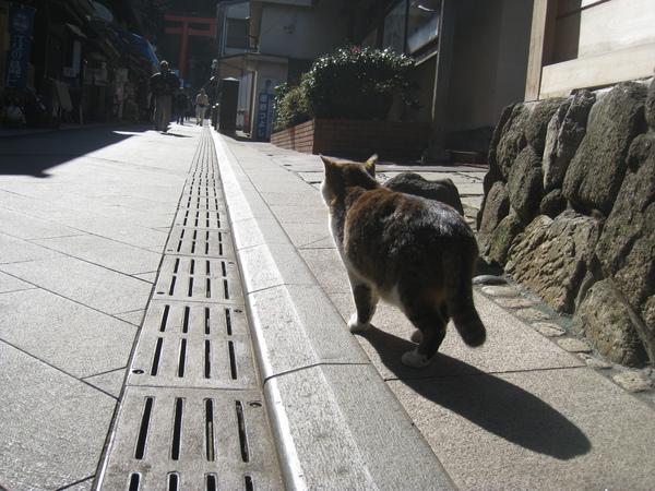 2010 Japan 266.jpg