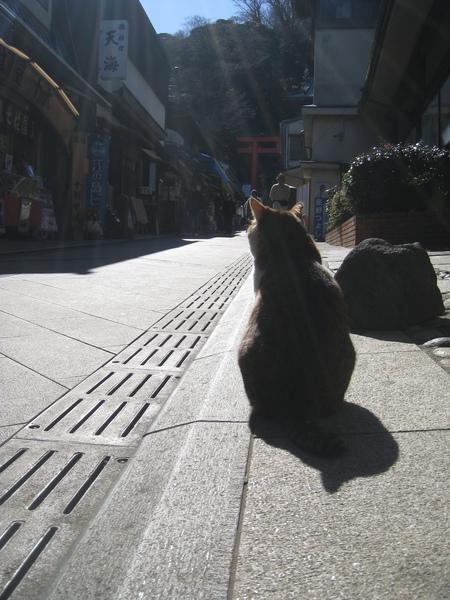 2010 Japan 269.jpg
