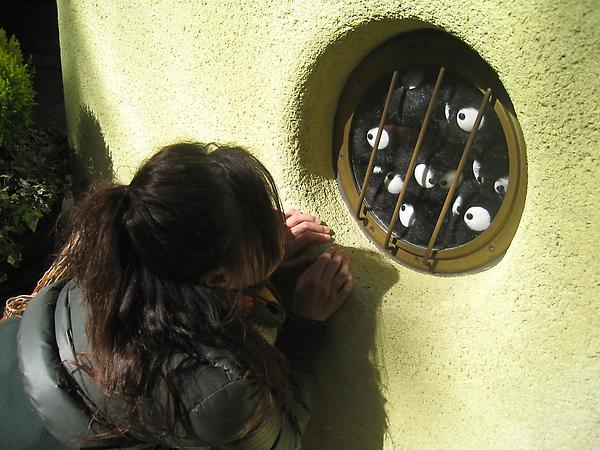 2010 Japan 598.jpg