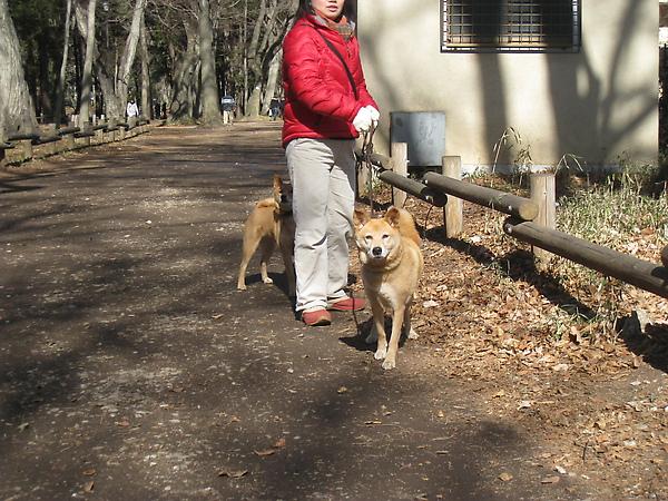 2010 Japan 631.jpg
