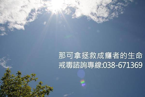 DSC_1352%E6%8B%B7%E8%B2%9D.jpg