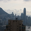 HK 20110624-27 015.jpg