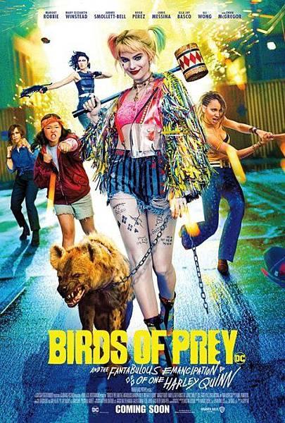 birds_of_prey_ver15.jpg
