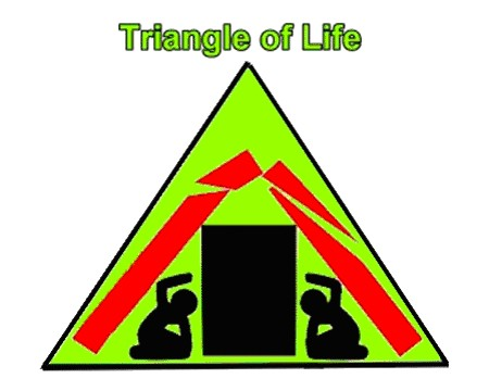 triangle of life.jpg