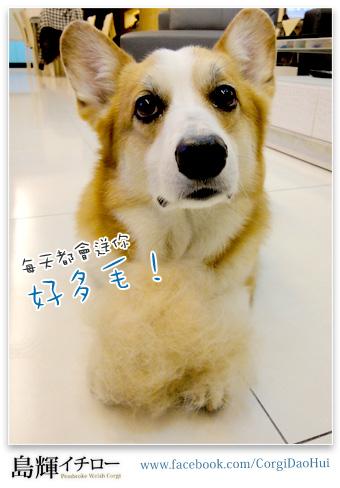 好難養_02