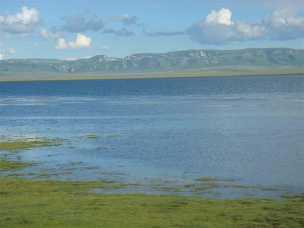 紅草原上的內陸湖