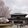 20120409奈良東大寺