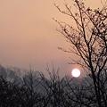 20120410琵琶湖畔