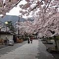 20120411嵐山