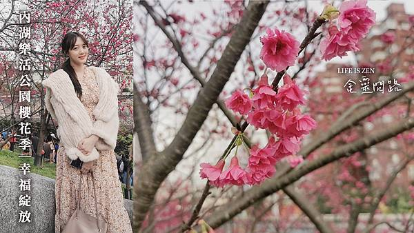內湖樂活公園櫻花季|2021年最新花訊|賞櫻地圖、交通、地點、花語|櫻花林綻放、美麗景點盡收眼裡!